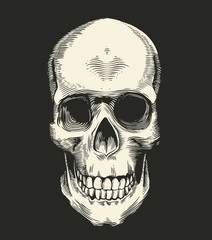 Human skull drawn in retro etching style isolated on black background, front view. Concept of horror and evil. Monochrome vector illustration for postcard, logotype, banner, tattoo, T-shirt print.