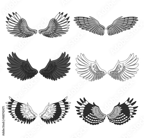 Collection Of 6 Pairs Of Elegant Bird Or Angel Spread Wings Isolated