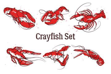 Hand drawn prawn or lobster. Text CRAYFISH SET. Sketch grunge vector set good for pub menu decoration