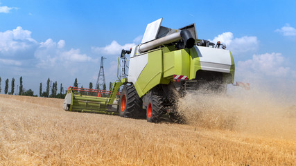 harvester collects the wheat harvest on the farmer's field