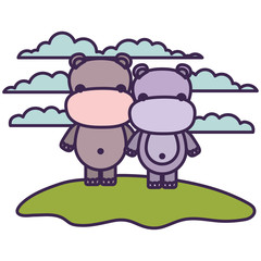 white background with light color scene couple faceless hippopotamus animals in grass vector illustration