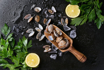 Poster Coquillage Vongole shellfish with lemon