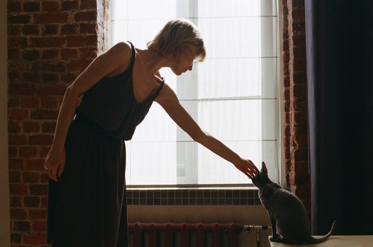 Woman stretches to a cat. Silhouette.