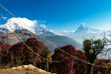 Beautiful view of Annapurna Himalayas Massif seen from Tadapani Village in the Gandaki Zone Nepal.