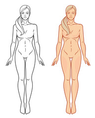 Female body template. Isolated vector image.