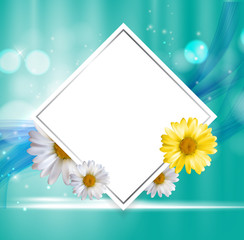 Abstract Natural Floral Frame Background wth Chamomile Flowers. Vector Illustration