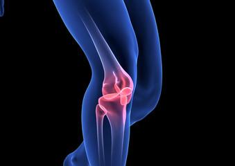 Knee Pain. Blue Human Anatomy Body 3D render on black background