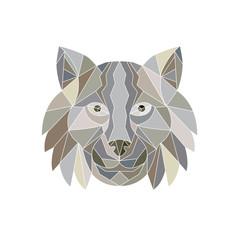 Lynx Cat Head Low Polygon