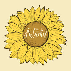 Beautiful vintage sunflower flower. Hello autumn. Hand drawn calligraphy and brush pen lettering. design for holiday greeting card and invitation of seasonal autumn holiday