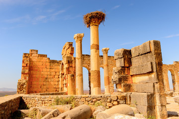 Volubilis, an excavated Berber and Roman city in Morocco, ancient capital of the kingdom of Mauretania. UNESCO World Heritage