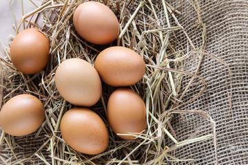 Eggs on hay