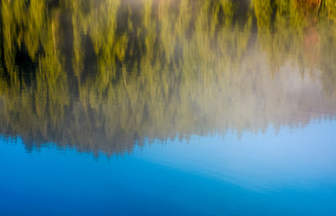 lake surface reflecting spruce forest and sky
