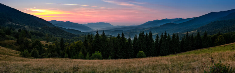 beautiful panoramic landscape with spruce forest in mountains. lovely scenery with reddish sky over the valley at dusk in early autumn
