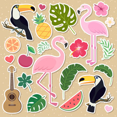 Vector tropical set. Palm leaves, pineapple, flamingos, exotic flowers, watermelon, orange. Very bright colorful cute cartoon style
