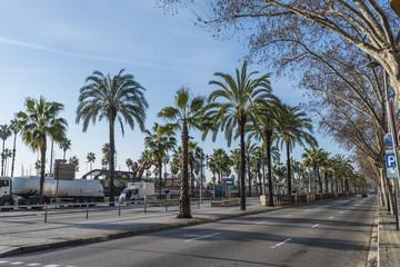 バルセロナの大通り