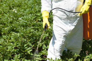 Pesticide spraying. Agricultural pollution.