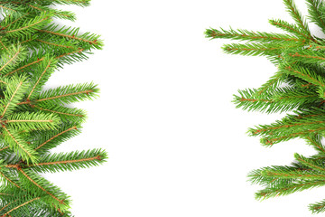 Christmas frame from fir branches on white background
