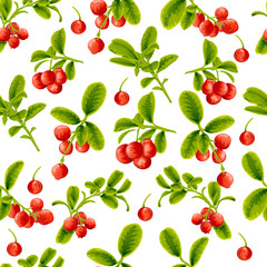 Seamless pattern lingonberry berries on a white background