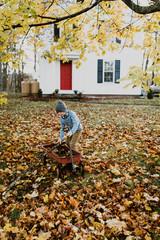 boy picking up stick