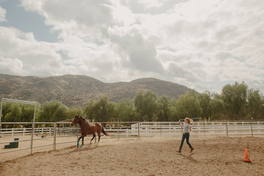 Young Girl Running Horse Around an Arena