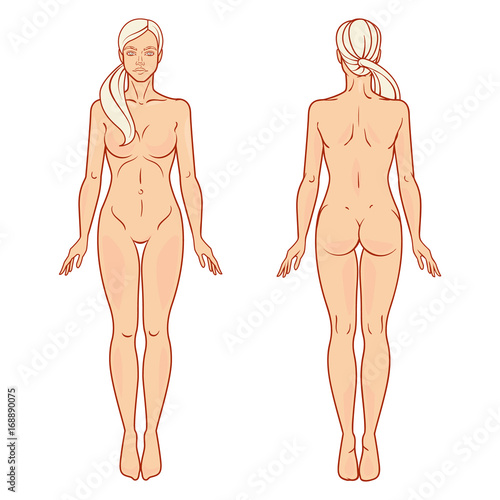 Female Body Front And Back View Template Isolated Vector Image