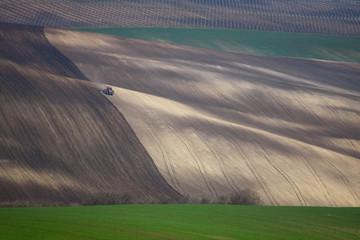Early spring in Moravia