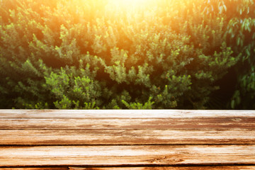 image of wooden table in front forest landscape at sunset light background
