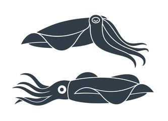 Squid Icon. Isolated squid on white background