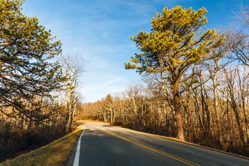 Early Spring at Skyline Drive. Shenandoah National Park.