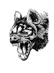 Graphical hyena isolated on white.Vector grin for coloring and tattoo
