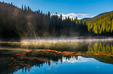 fog rise from the forest lake in mountains