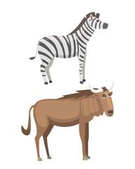 African animals cartoon vector set. zebra, safari isolated illustration