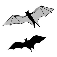 bat silhouette on white background, vector illustration