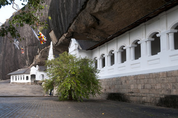 Dambulla cave temple also known as the Golden Temple of Dambulla in Sri Lanka