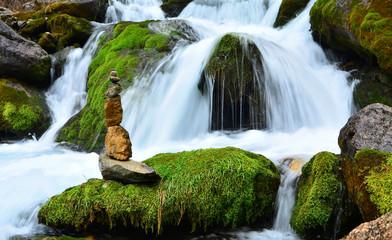 Sabır Ve Doğanın Birleşimi Zen Mucizesi