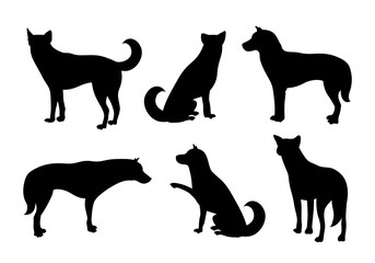 Set of dogs silhouette. Vecter illustration isolated on white background. Dog icons collection for cynology, pet clinic and pet shop.