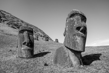 Moais statues on Rano Raraku volcano, easter island. Black and white picture