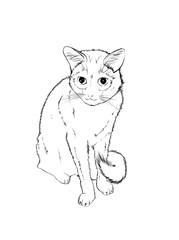 Vector sketch. White cute cat on a white background.