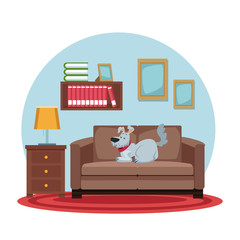 white background with circular colorful scene dog sleep in sofa vector illustration