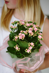 Female child holding a pink flowering plant