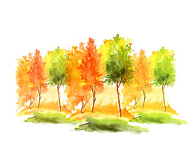 Watercolor autumn trees and bushes. Landscape, ladnshaft forests, parks, gardens, groves. Isolated on white background. Watercolor logo, greeting card, drawing for your design