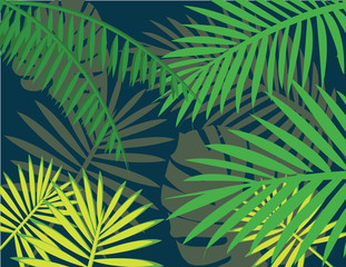 It's summer green tropical leaves sign