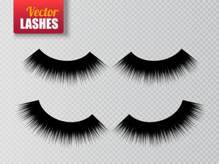 Lashes isolated on transparent background. False eyelashes set. Vector