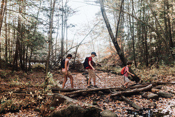 children on hike in New England