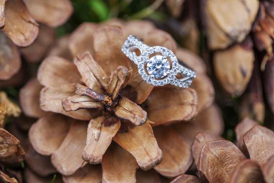 Beautiful shiny diamond ring at the autumn background