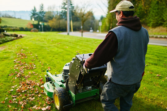 man mowing a lawn in the morning with leaves