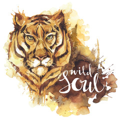 Watercolor tiger with handwritten words Wild Soul. African animal. Wildlife art illustration. Can be printed on T-shirts, bags, posters, invitations, cards, phone cases.