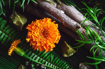 Marigold Flowers with Botanicals Stones