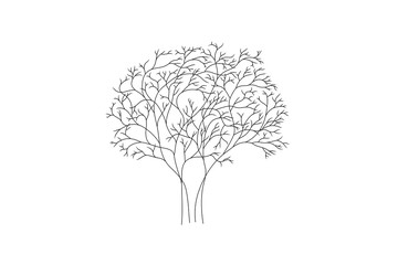 Line drawing of a tree, vector illustration.