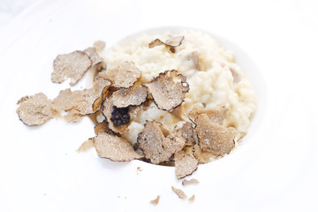 Risotto and black truffle serving in a white plate